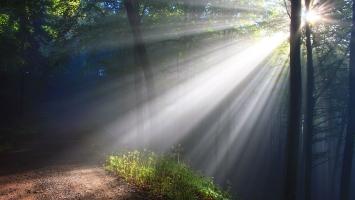 Daylight Illuminance